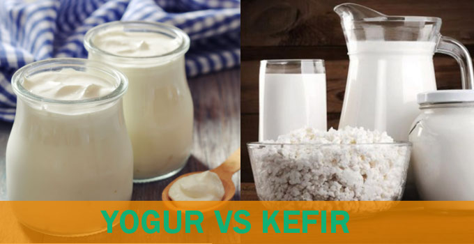 yogurt-y-kefir